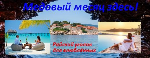 medovyvy2